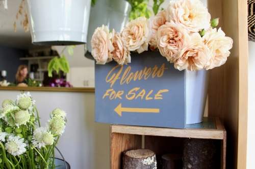 San Franciscans in their Element: Peddling Flowers and Spotting Designs