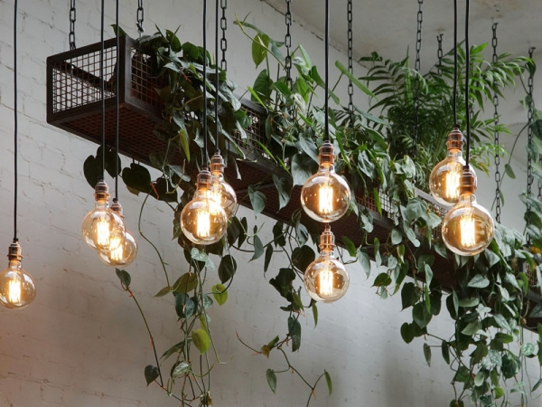 Tala's Lights at Hackney Coffee Company