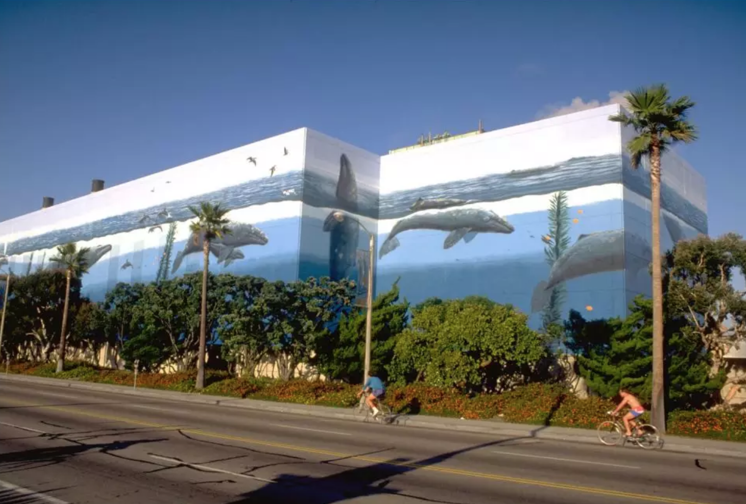 Whaling Wall Number 31 by Wyland at Redondo Beach, as seen on Wescover.