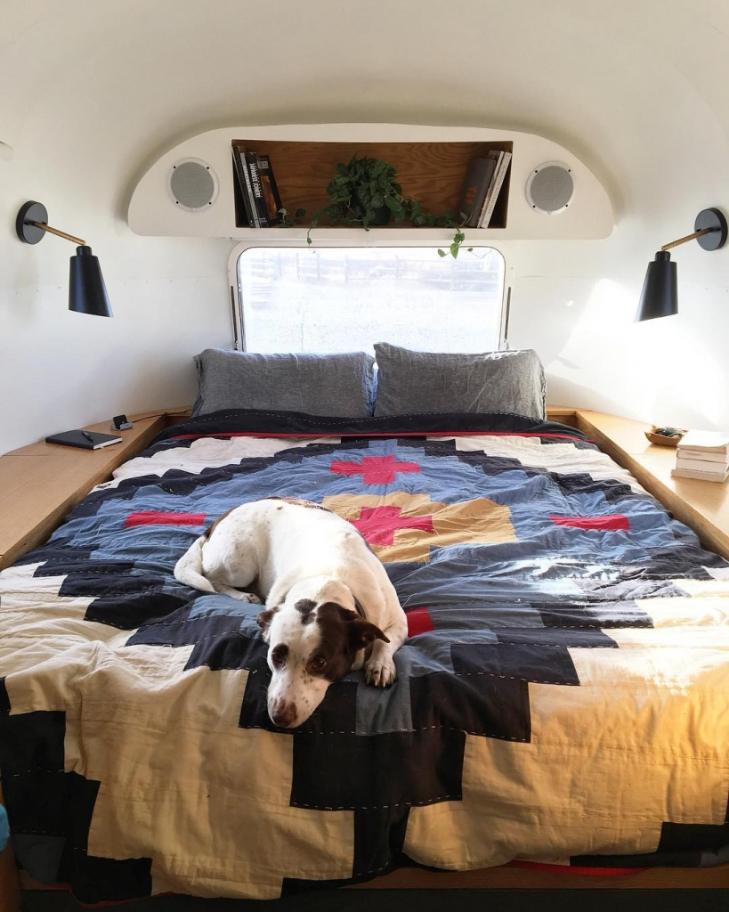 One of Laura's dogs sitting on top of her quilt at the back of her Airstream trailer.