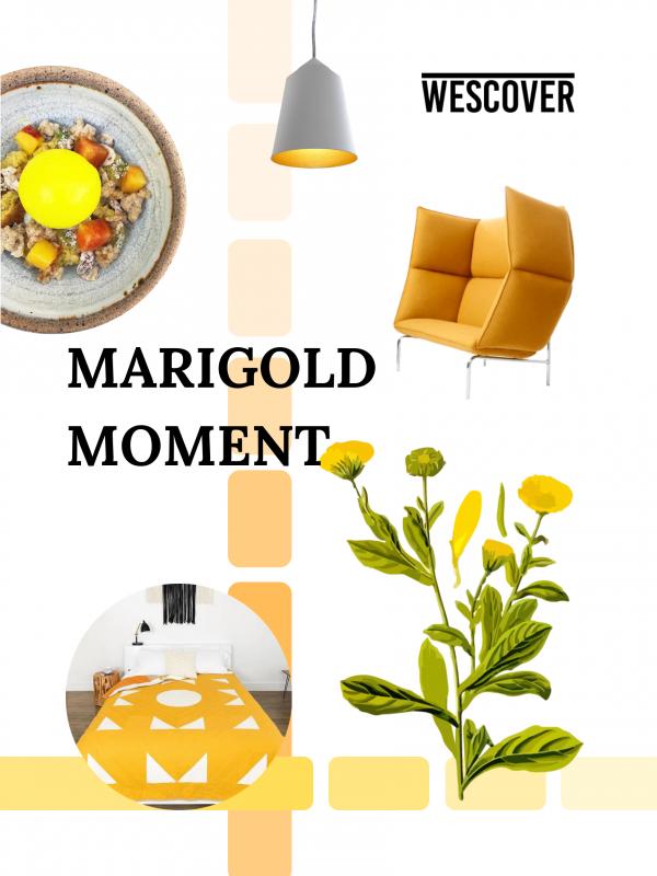 Marigold Moment