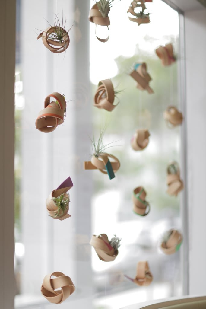 Suspended Air Plant Planters by Art of Plants and Elliptic Designs