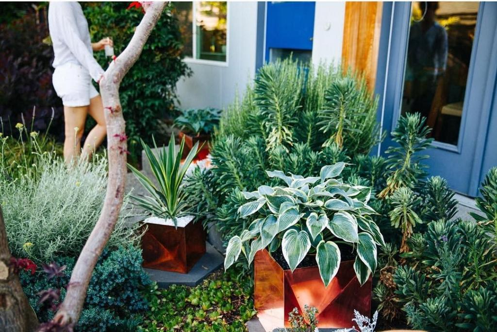 Origami Planters by Trey Jones Studio