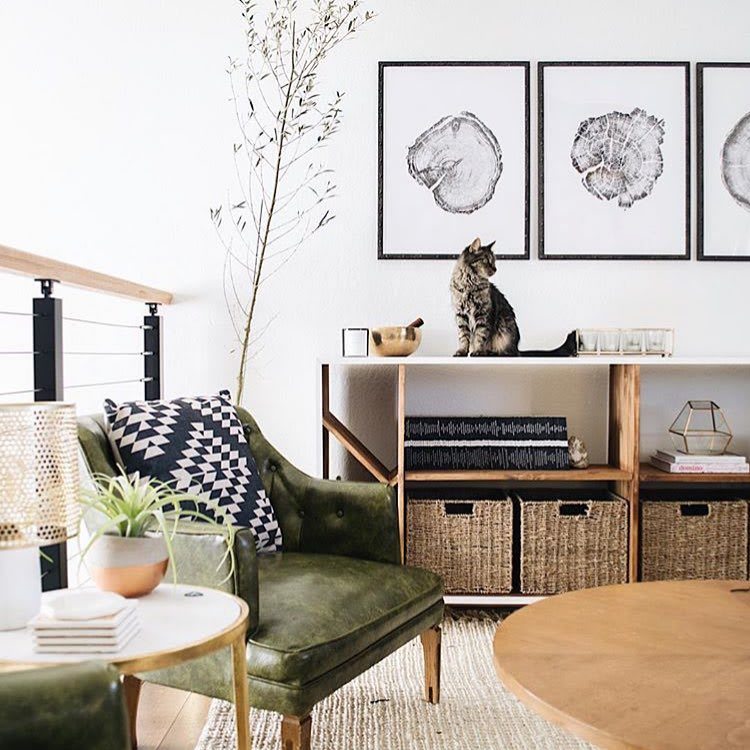 Tree Ring Prints Wall Hangings by Erik Linton. The tree ring prints by Erik Linton looks stunning for this cozy living room designed by Nest Out West in Denver.