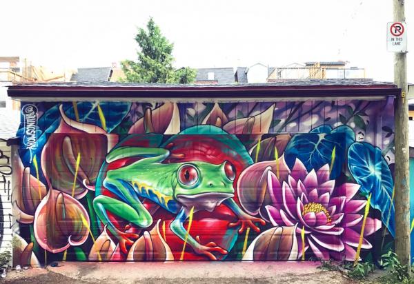 frog art feature art